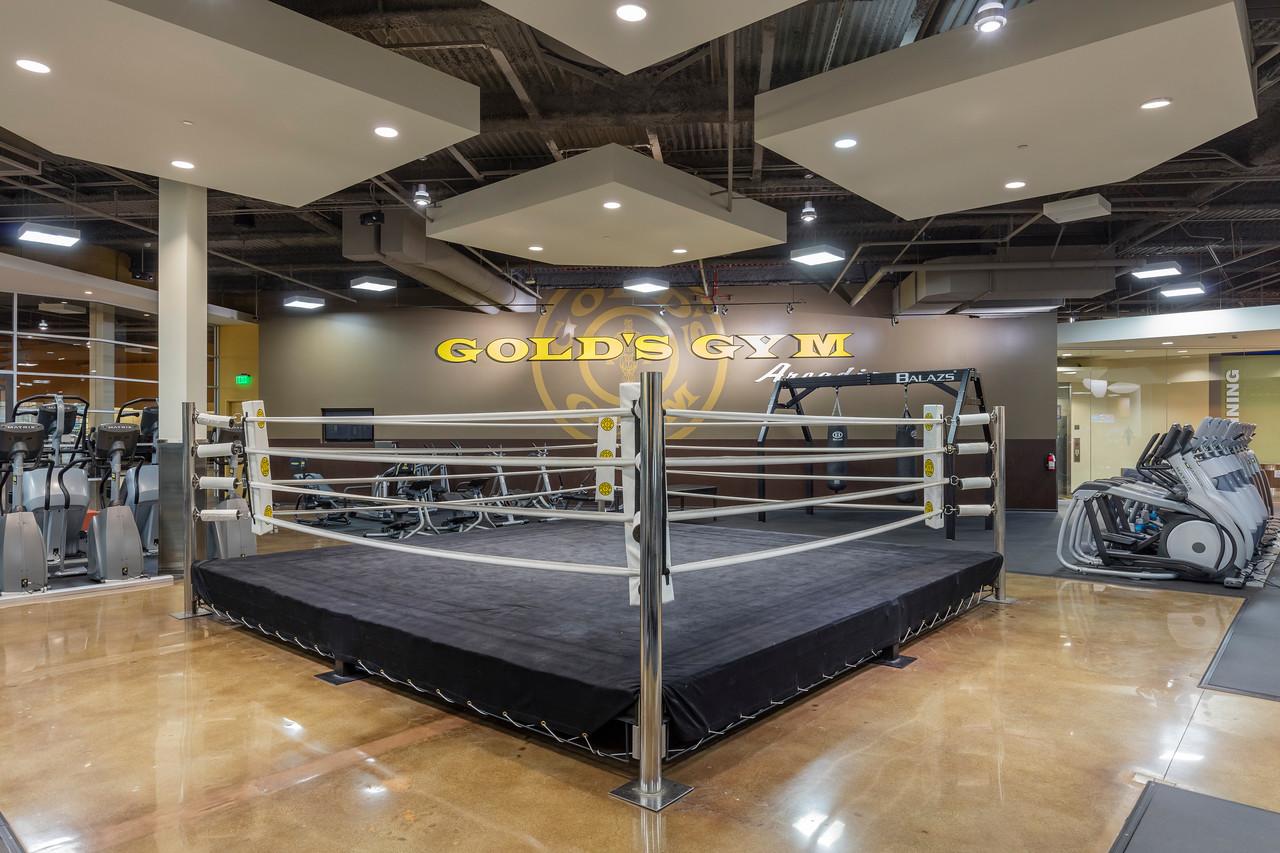 arcadia gym boxing ring