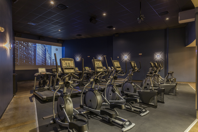 Discover the new golds gym member experience in fullerton ca