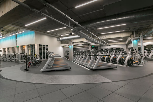 Gold s gym glendale at galleria mall glendale galleria a