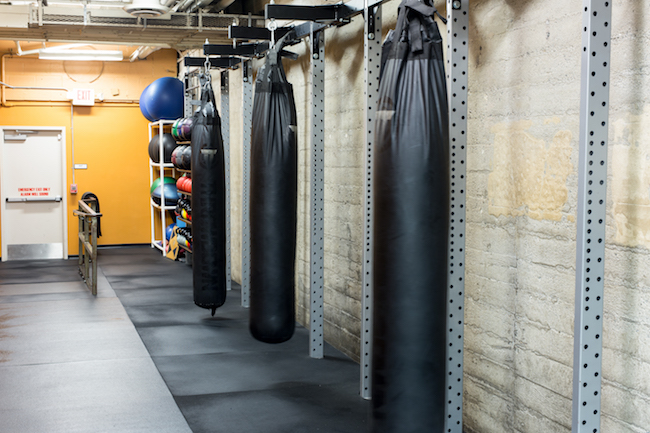 hollywood gym boxing bags