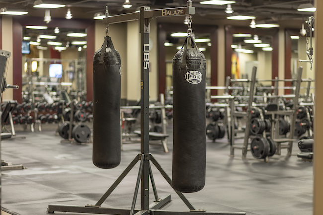 Discover The New Gold S Gym Member Experience In Downtown La