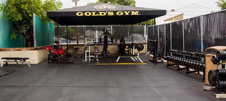 Golds gym home equipment vs body solid u wholeworld club