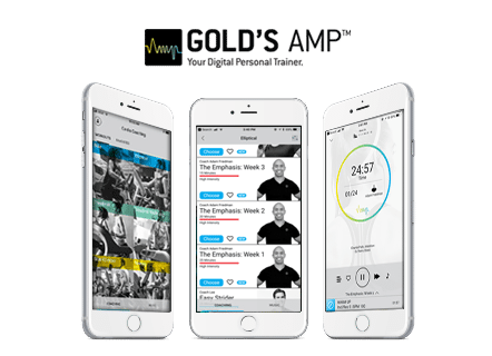 GOLD'S AMP Screen