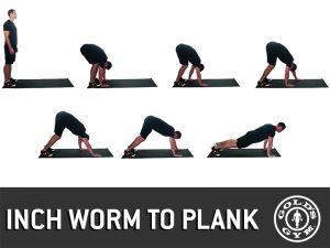 Inch Worm to Plank